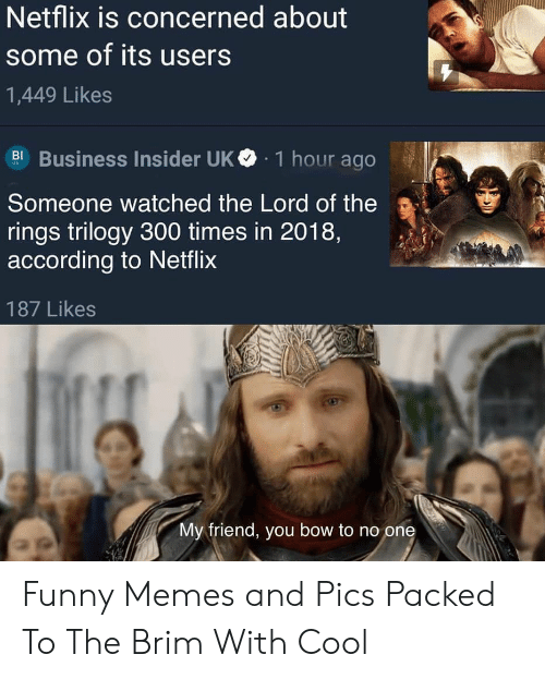 Funny, Memes, and Netflix: Netflix is concerned about  some of its users  1,449 Likes  Business Insider UK  1 hour ago  BI  Someone watched the Lord of the  rings trilogy 300 times in 2018,  according to Netflix  187 Likes  My friend, you bow to no one Funny Memes and Pics Packed To The Brim With Cool