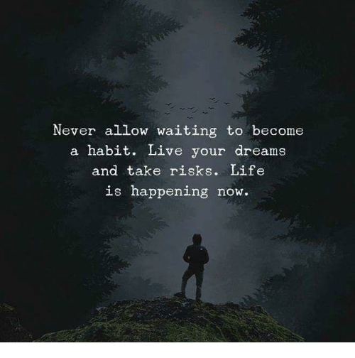 Life, Live, and Dreams: Never allow waiting to become  a habit. Live your dreams  and take risks. Life  is happening now.