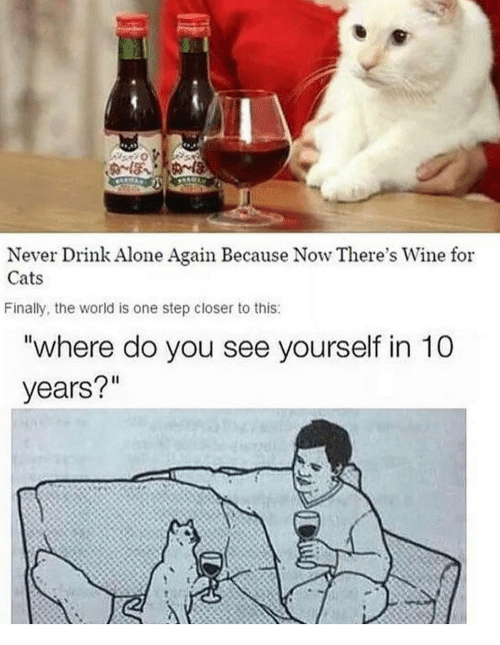 "Being Alone, Cats, and Wine: Never Drink Alone Again Because Now There's Wine for  Cats  Finally, the world is one step closer to this:  ""where do you see yourself in 10  years?"""
