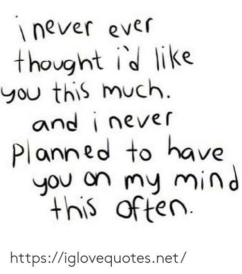 This Much: never ever  thought id like  you this much  and i never  Planned to have  you on my mind  this  of ten https://iglovequotes.net/