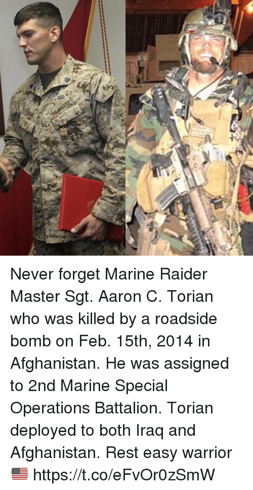 Memes, Afghanistan, and Iraq: Never forget Marine Raider Master Sgt. Aaron C. Torian who was killed by a roadside bomb on Feb. 15th, 2014 in Afghanistan. He was assigned to 2nd Marine Special Operations Battalion. Torian deployed to both Iraq and Afghanistan. Rest easy warrior 🇺🇸 https://t.co/eFvOr0zSmW
