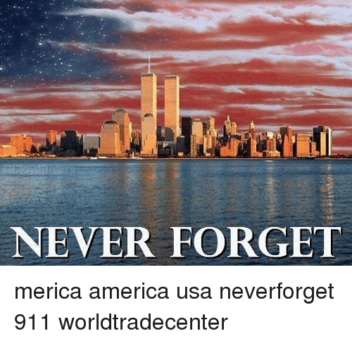 Forgetfulness: NEVER FORGET merica america usa neverforget 911 worldtradecenter