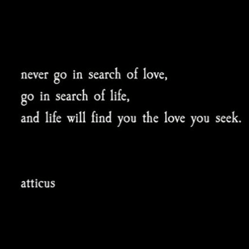 In Search Of: never go in search of love,  go in search of life,  and life will find you the love you seek  atticus