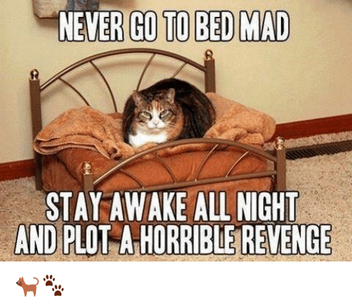 Memes, Revenge, and Mad: NEVER GO TO BED MAD  STAY AWAKE ALL NIGHT  AND PLO  A HORRIBLE REVENGE 🐈🐾