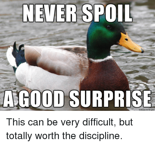 Good, Never, and Can: NEVER SPOIL  A GOOD SURPRISE This can be very difficult, but totally worth the discipline.