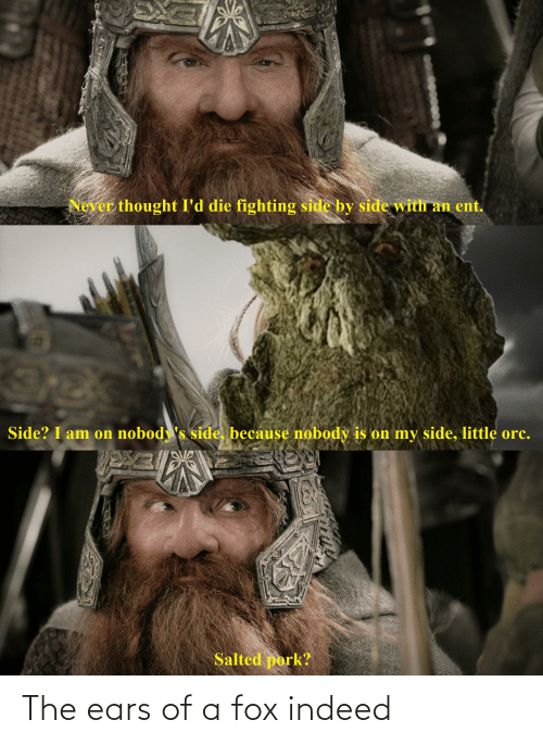 ent: Never thought I'd die fighting side by side with an ent.  Side? I am on nobody's side, because nobody is on my side, little orc.  Salted pork? The ears of a fox indeed