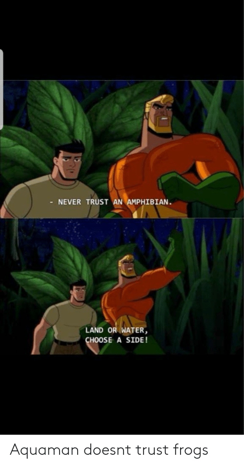 aquaman: NEVER TRUST AN AMPHIBIAN  LAND OR WATER  CHOOSE A SIDE! Aquaman doesnt trust frogs