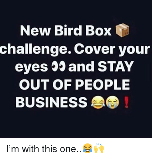 Business, Hood, and Box: New Bird Box  challenge. Cover your  eyes 03 and STAY  OUT OF PEOPLE  BUSINESS I'm with this one..😂🙌