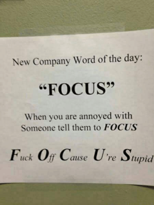 """Focus, Fuck, and Word: New Company Word of the day:  """"FOCUS""""  When you are annoyed with  Someone tell them to FOCUS  Fuck Off Cause U re Stupid"""