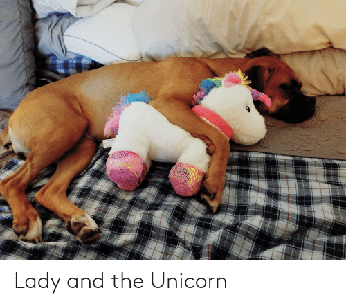 The Unicorn: NEW MATERAD  BYON D  CONTENT  POLYESTER FBRE Lady and the Unicorn