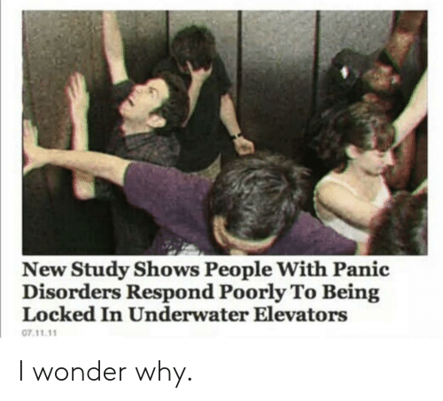 Wonder, Why, and New: New Study Shows People With Panic  Disorders Respond Poorly To Being  Locked In Underwater Elevators  07.11.11 I wonder why.