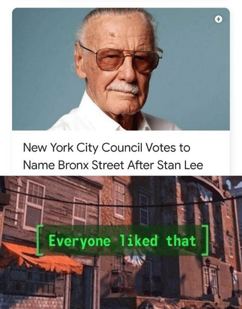 York City: New York City Council Votes to  Name Bronx Street After Stan Lee  Everyone liked that