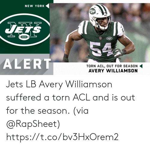 torn: NEW YORK  HHH  54  ALERT  TORN ACL, OUT FOR SEASON  AVERY WILLIAMSON Jets LB Avery Williamson suffered a torn ACL and is out for the season. (via @RapSheet) https://t.co/bv3HxOrem2