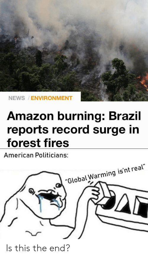 """Amazon, Global Warming, and News: NEWS ENVIRONMENT  Amazon burning: Brazil  reports record surge in  forest fires  American Politicians:  """"Global Warming is'nt real"""" Is this the end?"""