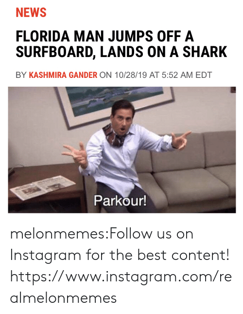 gander: NEWS  FLORIDA MAN JUMPS OFF A  SURFBOARD, LANDS ON A SHARK  BY KASHMIRA GANDER ON 10/28/19 AT 5:52 AM EDT  Parkour! melonmemes:Follow us on Instagram for the best content! https://www.instagram.com/realmelonmemes