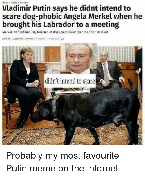 Putin Meme: News World, Europe  Vladimir Putin says he didnt intend to  scare dog-phobic Angela Merkel when he  brought his Labrador to a meeting  Merkel, who is famously terrified of dogs, kept quiet over the 2007 incident  didn't intend to scare  A Probably my most favourite Putin meme on the internet
