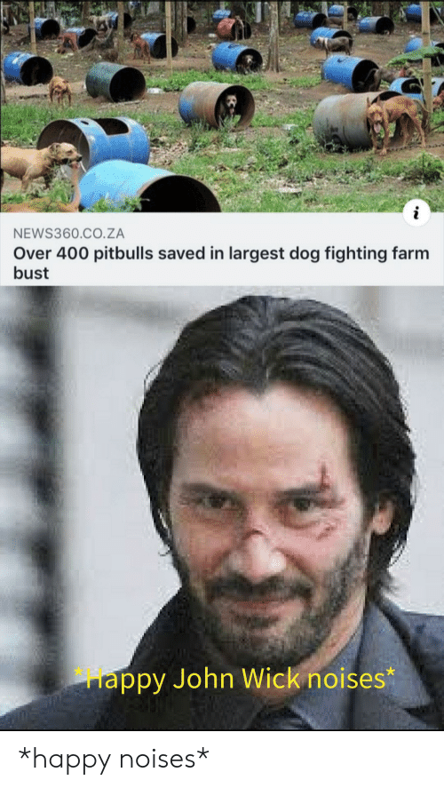 John Wick, Happy, and Dog: NEWS360.CO.ZA  Over 400 pitbulls saved in largest dog fighting farm  bust  appy John Wick noises* *happy noises*