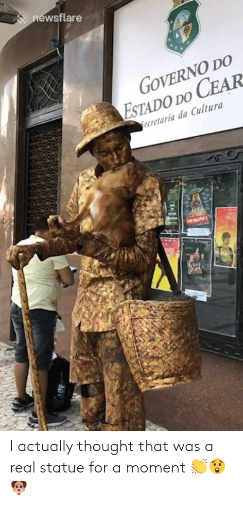 Thought, Moment, and Real: newsflare  GOVERNO DO  ESTADO DO CEAR  ecretaria da Cultura I actually thought that was a real statue for a moment 👏😲🐶