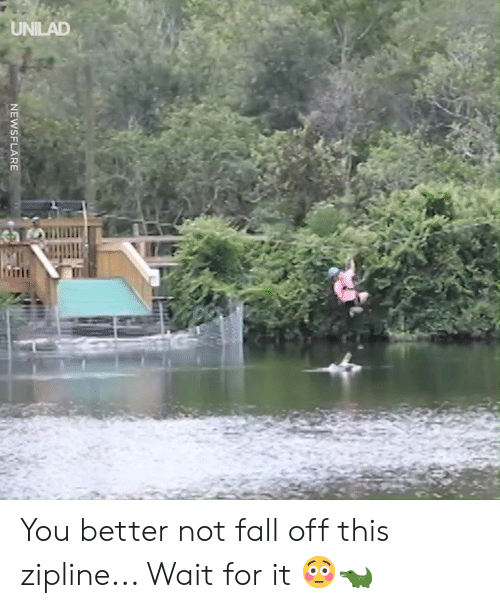 Dank, Fall, and 🤖: NEWSFLARE You better not fall off this zipline... Wait for it 😳🐊