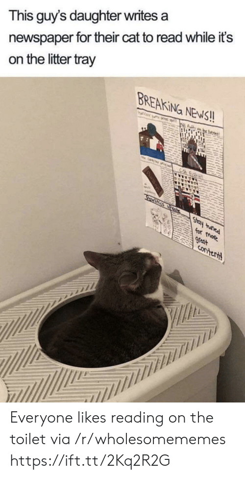 Its On: newspaper for their cat to read while it's  on the litter tray  This guy's daughter writes a  BREAKING NEWS!!  TH  Cr  Co  Stay tunad  for more  great  Contentt Everyone likes reading on the toilet via /r/wholesomememes https://ift.tt/2Kq2R2G