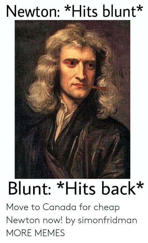 Dank, Memes, and Target: Newton: *Hits blunt*  Blunt: *Hits back* Move to Canada for cheap Newton now! by simonfridman MORE MEMES