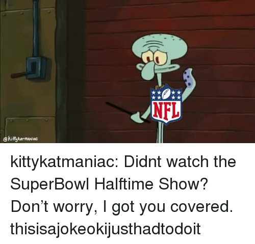 Nfl, Tumblr, and Blog: NFL  Kity armANIAC kittykatmaniac: Didnt watch the SuperBowl Halftime Show? Don't worry, I got you covered. thisisajokeokijusthadtodoit