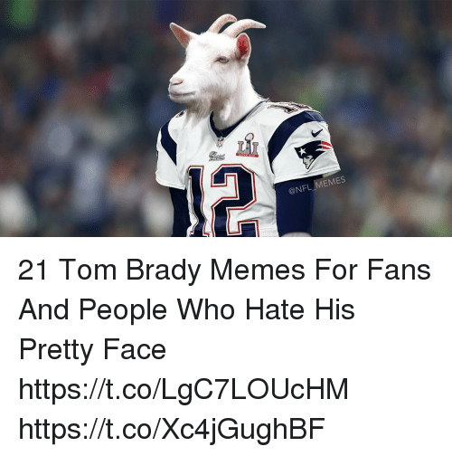 Tom Brady Memes: @NFL MEMES 21 Tom Brady Memes For Fans And People Who Hate His Pretty Face https://t.co/LgC7LOUcHM https://t.co/Xc4jGughBF