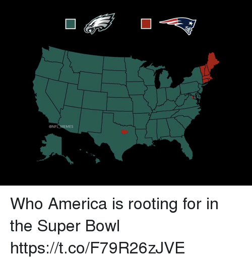 America, Football, and Memes: @NFL MEMES Who America is rooting for in the Super Bowl https://t.co/F79R26zJVE