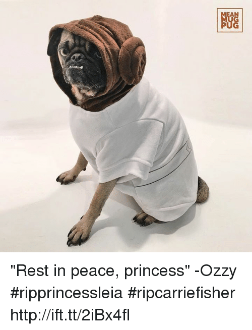"Memes, Princess, and 🤖: NGG ""Rest in peace, princess"" -Ozzy #ripprincessleia #ripcarriefisher http://ift.tt/2iBx4fl"