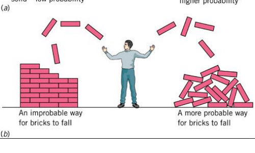 Fall, For, and More: ngle probay  An improbable way  for bricks to fall  A more probable way  for bricks to fall