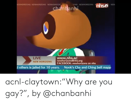 "Facebook, Instagram, and Tumblr: nhso  EWHORIZONS NEWNORIZONS NEWHORZON  ONS NEWNORZONS  NEW  chanbanhi  www.nhs.ac  newhorizons@nhs.org  FACEBOOK: newhorizons on nhs  LIVE  NEW HORIZONS  Nook's Cha and Ching bell mapp  others is jailed for 10 years. acnl-claytown:""Why are you gay?"", by @chanbanhi"