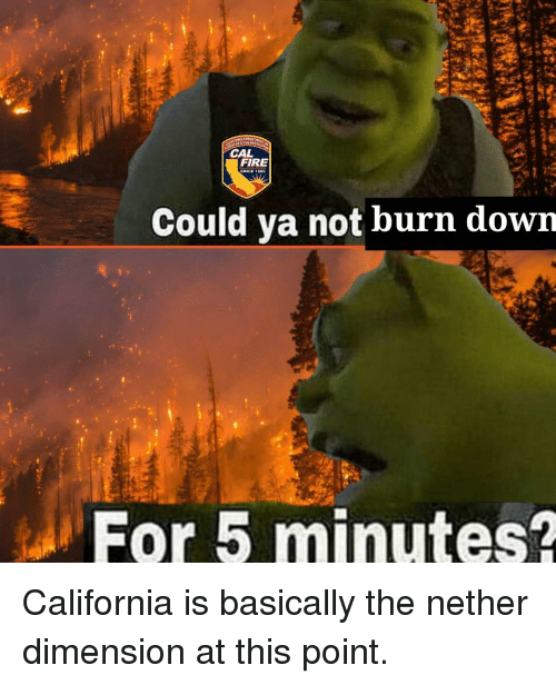 Fire, California, and Down: NIA OPARTM  CAL  FIRE  Could ya not burn down  For 5 minutes? California is basically the nether dimension at this point.