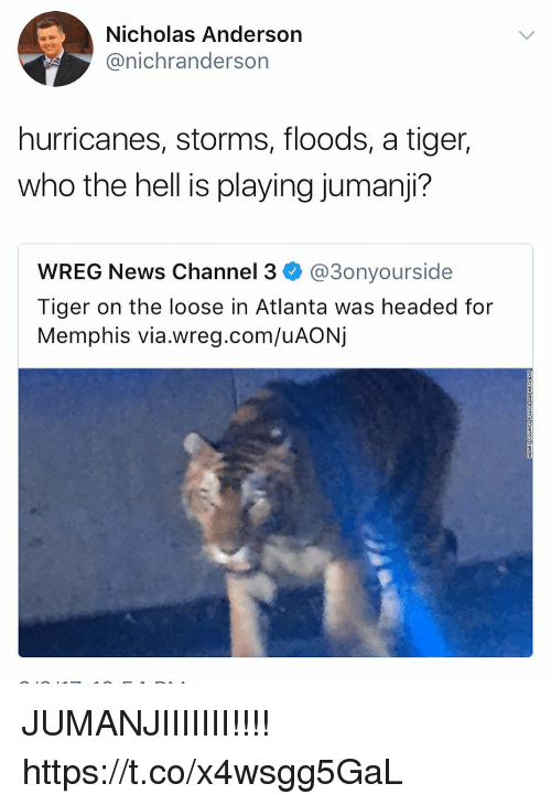 channeling: Nicholas Anderson  @nichranderson  hurricanes, storms, floods, a tiger,  who the hell is playing jumanji?  WREG News Channel 3 @3onyourside  Tiger on the loose in Atlanta was headed for  Memphis via.wreg.com/uAONj JUMANJIIIIIII!!!! https://t.co/x4wsgg5GaL