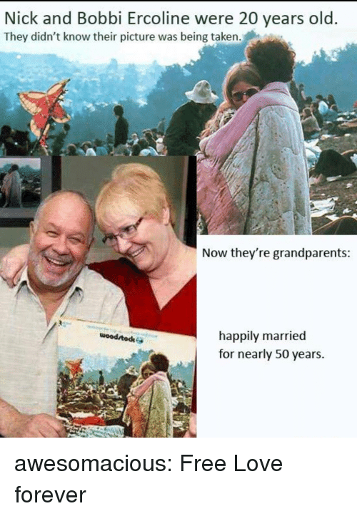 Love, Taken, and Tumblr: Nick and Bobbi Ercoline were 20 years old  They didn't know their picture was being taken.  Now they're grandparents  happily married  for nearly 50 years.  woodrtodke awesomacious:  Free Love forever