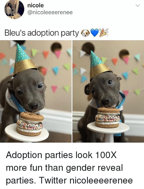 Memes, Party, and Twitter: nicole  @nicoleeeerenee  Bleus adoption party Adoption parties look 100X more fun than gender reveal parties. Twitter nicoleeeerenee