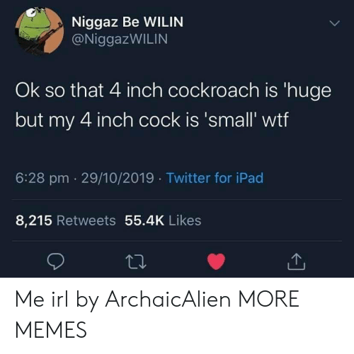 inch: Niggaz Be WILIN  @NiggazWILIN  Ok so that 4 inch cockroach is 'huge  but my 4 inch cock is 'small' wtf  6:28 pm 29/10/2019 Twitter for iPad  8,215 Retweets 55.4K Likes Me irl by ArchaicAlien MORE MEMES