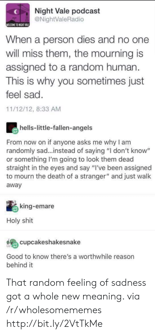 """Shit, Angels, and Death: Night Vale podcast  @NightValeRadio  ELCOME TO NIGHT VRIE  When a person dies and no one  will miss them, the mourning is  assigned to a random human  This is why you sometimes just  feel sad.  11/12/12, 8:33 AM  hells-little-fallen-angels  From now on if anyone asks me why I am  randomly sad...instead of saying """"I don't know""""  or something I'm going to look them dead  straight in the eyes and say """"I've been assigned  to mourn the death of a stranger"""" and just walk  away  king-emare  Holy shit  cupcakeshakesnake  Good to know there's a worthwhile reason  behind it That random feeling of sadness got a whole new meaning. via /r/wholesomememes http://bit.ly/2VtTkMe"""