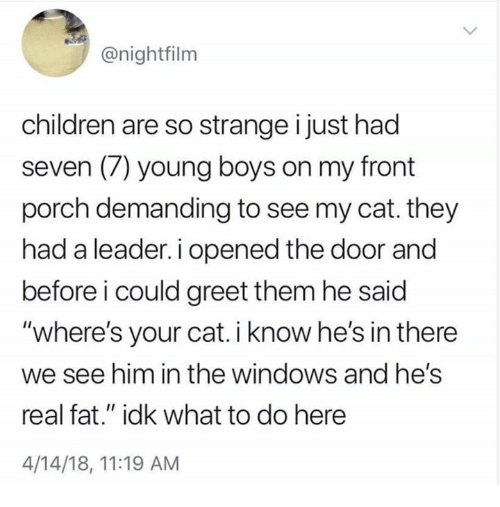 """Children, Windows, and Fat: @nightfilm  children are so strange i just had  seven (7) young boys on my front  porch demanding to see my cat. they  had a leader. i opened the door and  before i could greet them he said  """"where's your cat. i know he's in there  we see him in the windows and he's  real fat."""" idk what to do here  4/14/18, 11:19 AM"""