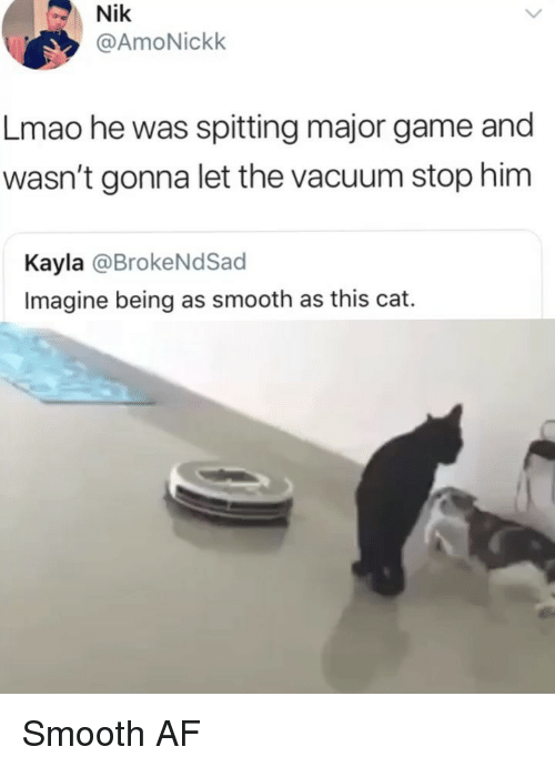 Af, Lmao, and Memes: Nik  @AmoNickk  Lmao he was spitting major game and  wasn't gonna let the vacuum stop him  Kayla @BrokeNdSacd  Imagine being as smooth as this cat. Smooth AF