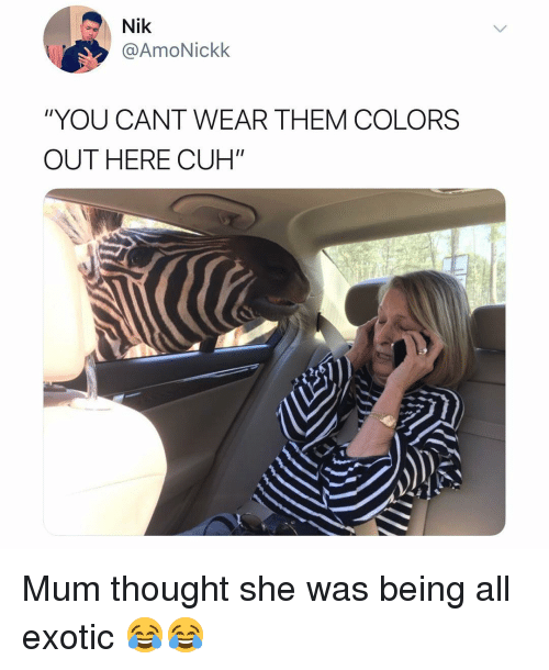 """Memes, Thought, and 🤖: Nik  @AmoNickk  """"YOU CANT WEAR THEM COLORS  OUTHERE CUH"""" Mum thought she was being all exotic 😂😂"""