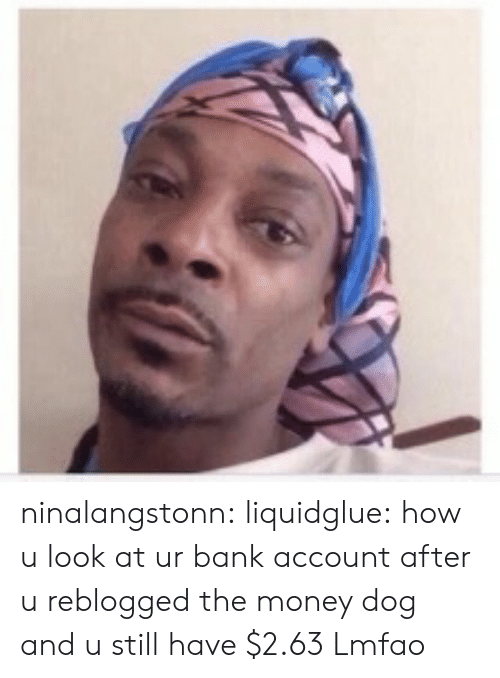 Money Dog: ninalangstonn:  liquidglue:  how u look at ur bank account after u reblogged the money dog and u still have $2.63   Lmfao