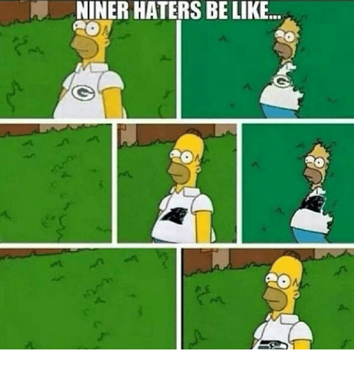 Haters Be Like: NINER HATERS BE LIKE