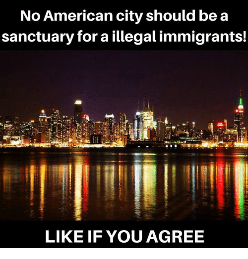 Memes, American, and 🤖: No American city should bea  sanctuary for a illegal immigrants!  LIKE IF YOU AGREE
