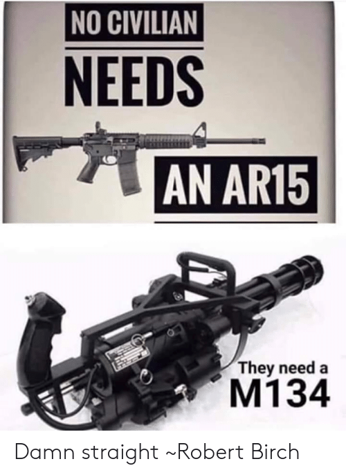 Memes, Ar15, and 🤖: NO CIVILIAN  NEEDS  AN AR15  They need a  M134 Damn straight  ~Robert Birch