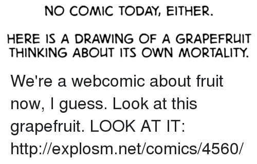 grapefruiting: NO COMIC TODAY, EITHER.  HERE IS A DRAWING OF A GRAPEFRUIT  THINKING ABOUT ITS OWN MORTALITY. We're a webcomic about fruit now, I guess. Look at this grapefruit. LOOK AT IT: http://explosm.net/comics/4560/