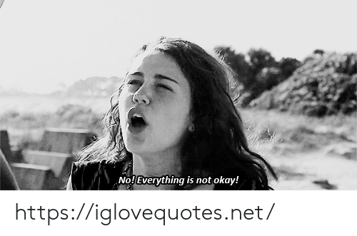 Not Okay: No!Everything is not okay! https://iglovequotes.net/