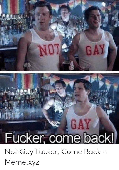 Meme, Back, and Gay: NO GAY  GAY  Fucker, come back Not Gay Fucker, Come Back - Meme.xyz