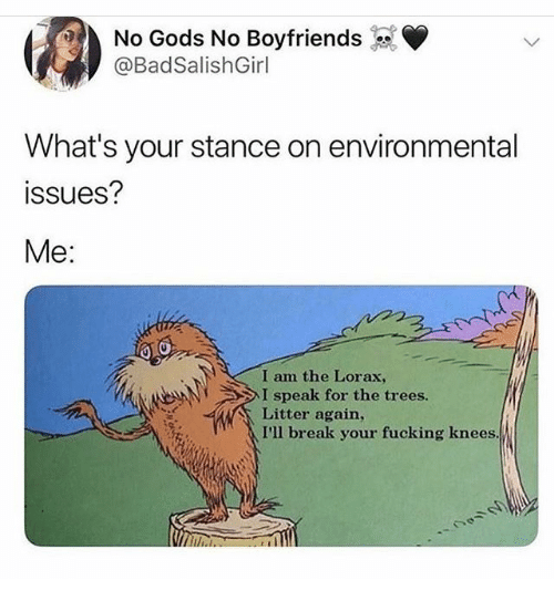 Environmental: No Gods No Boyfriends  @BadSalishGirl  What's your stance on environmental  ssues?  Me:  I am the Lorax,  I speak for the trees.  Litter again,  I'll break your fucking knees.