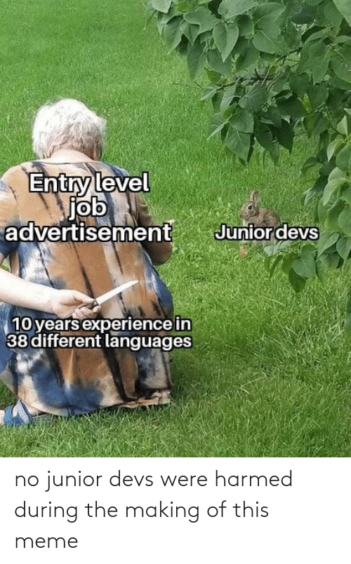 junior: no junior devs were harmed during the making of this meme