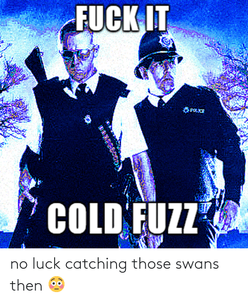 no luck: no luck catching those swans then 😳